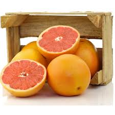 Organic Grapefruit Seed Extract